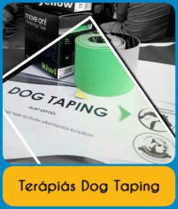 dog taping - kutyaterapia.hu