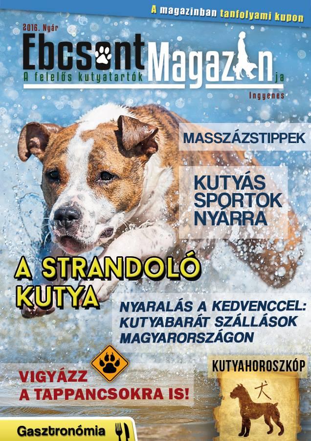 Ebcsont Magazin 2016 Nyár
