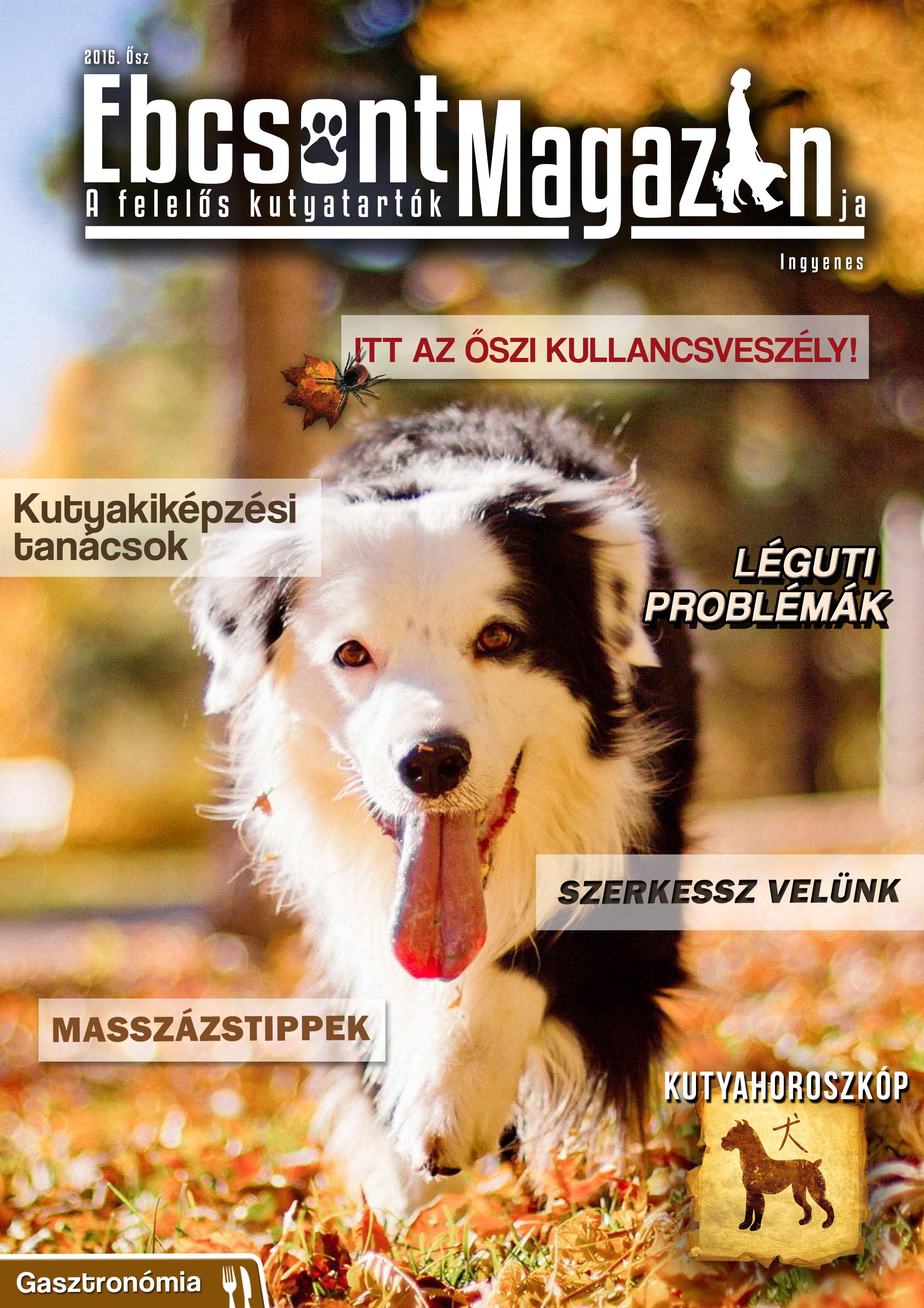 Ebcsont Magazin 2016 Ősz
