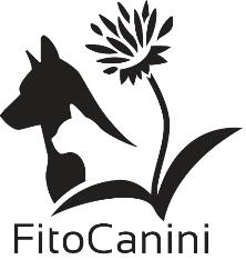 kutyaterapia.hu partner - gyógynövény kutyáknak