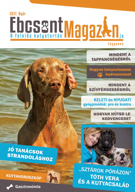 Ebcsont Magazin 2017 Nyár