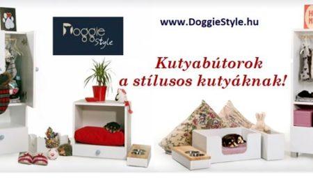 doggiestyle - kutyaterapia.hu