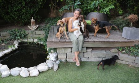 kutyaterapia - tornoczkyanita
